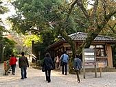日本之旅 Day4:CIMG7188