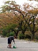 日本之旅 Day4:CIMG7193