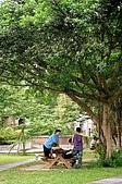 台大走走:台灣大學校園一景