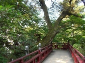 日本之旅 Day4:CIMG7318