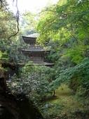 日本之旅 Day4:CIMG7319