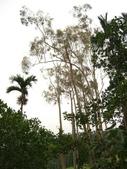豐山生態園區:鄉間景觀