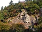 日本之旅 Day4:CIMG7320