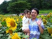 20060728北海道:064向日葵花園.jpg