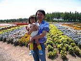 20060728北海道:042太陽好大呀.jpg