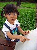 20070610雨天白河:有螞蟻