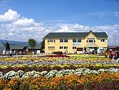 20060728北海道:043四季彩之丘的房舍.jpg