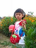 20070429表舅結婚:誰叫爸媽沒帶我去日本