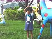 20070610雨天白河:我要和鹿(樹)照像