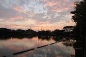 2015-04-06 天鵝湖餵魚:天鵝湖餵魚  12.jpg