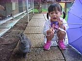 20070619慶端午:這兔子很可愛吧