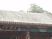20090826北京篇:北京篇095.jpg