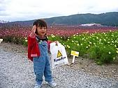 20060728北海道:129昆布館的後花園.jpg