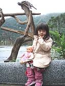 20080129花東宜五日-4:花東五日 392.jpg