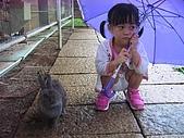 20070619慶端午:不跟我玩