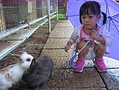 20070619慶端午:還是小白兔比較乖