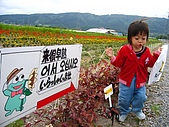 20060728北海道:131青蛙,哇哇哇....jpg
