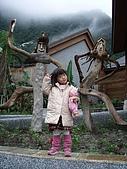 20080129花東宜五日-4:花東五日 400.jpg