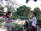 20090826北京篇:北京篇061.jpg