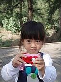 20071229四草安平白鷺灣:棄械投降