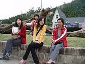 20080129花東宜五日-3:花東五日 369.jpg