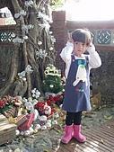 20071229四草安平白鷺灣:天雷地火