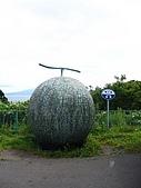 20060728北海道:114高速公路邊的哈密瓜.jpg