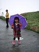20080129花東宜五日-3:花東五日 328.jpg