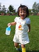 20060728北海道:028好大的綠草原.jpg