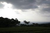 20120712 南投猴探井-星月天空:星夜天空 027.jpg