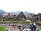 20070425合掌村:池塘,櫻花,房屋,山嵐又是一幅美景
