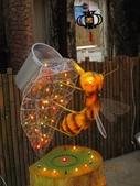 20100227 嘉義燈會 w/ 媽咪同事:嘉義燈會 2010 最新~蜜蜂