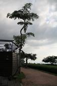 20120712 南投猴探井-星月天空:星夜天空 032.jpg