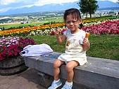 20060728北海道:053第五道菜--薰衣草故鄉.jpg