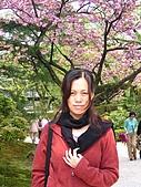 20070426兼六園:兼六園是日本三大名園之一