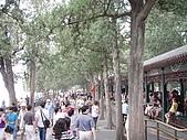 20090826北京篇:北京篇115.jpg