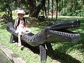 20070924松田崗:鱷魚