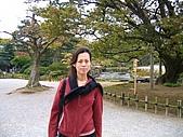 20070426兼六園:不知有名的是啥松樹