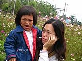20070406七股潟湖:媽媽是遊覽車