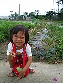 20070506白河半日:鳳梨