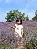 20060728北海道:035薰衣草原,我也要拍.jpg