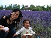 20060728北海道:058第七道菜--下富良野,富田花園農場.jpg