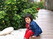 20070406七股潟湖:阿嬤是火車