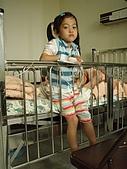 20080517肺炎住院:肺炎 030.JPG