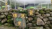 2017-05-29 傳說村:29457.jpg