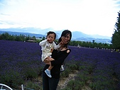 20060728北海道:059薰衣草原真漂亮.jpg