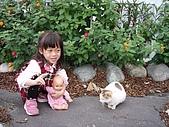 20080129花東宜五日-3:花東五日 341.jpg