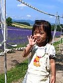 20060728北海道:037第二道菜,拓真館的薰衣草原.jpg