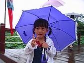 20070610雨天白河:今天白河蓮花季開幕