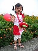 20070429表舅結婚:特地來往麻豆路上的花田拍個照